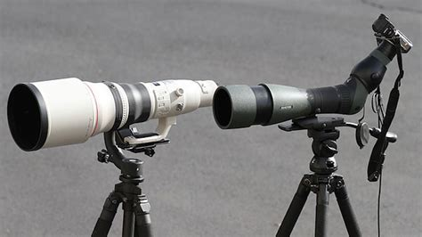Digiscoping dissected: Can Swarovski's scopes pinch-hit