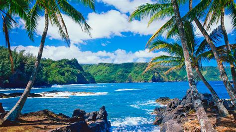 Find Peace and Adventure with a Yoga Retreat in Hawaii