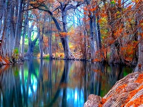 Nature Autumn Stream Backgrounds Wallpapers : Wallpapers13