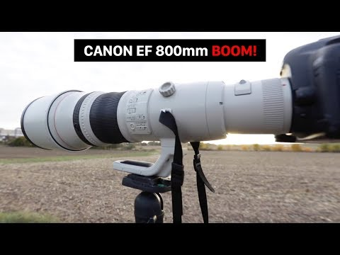 Sigma 300-800 Lens - Airliners