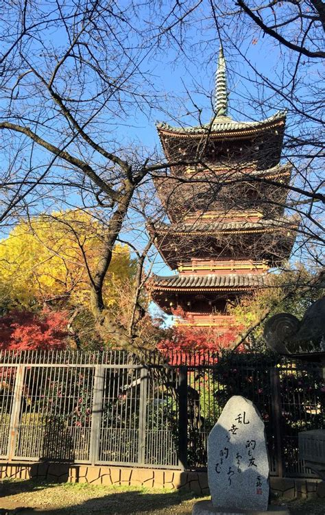 Half day private tour in and around Tokyo (3 hours