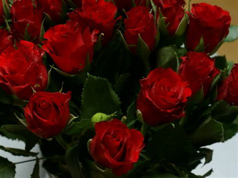 Wayne Newton - Red Roses For A Blue Lady - YouTube