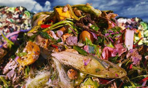 Documentary highlights food waste issue with world-famous