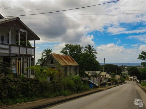One Day in Barbados - Rum, Monkeys and 4x4s - Our Wander